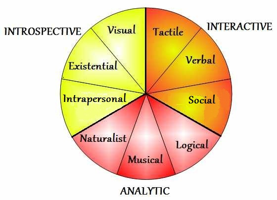 Multiple intelligences for adults literacy and education